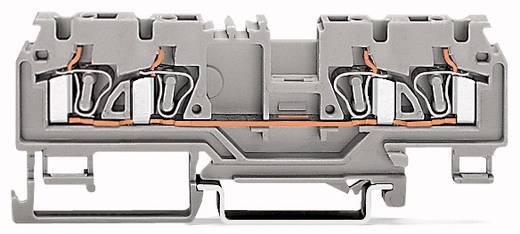 Durchgangsklemme 5 mm Zugfeder Orange WAGO 880-832/999-940 50 St.