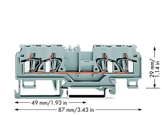 Durchgangsklemme 5 mm Zugfeder Belegung: L Grau WAGO 880-831 50 St.
