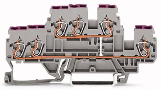 Doppelstock-Durchgangsklemme 5 mm Zugfeder Belegung: L Grau WAGO 870-538 50 St.