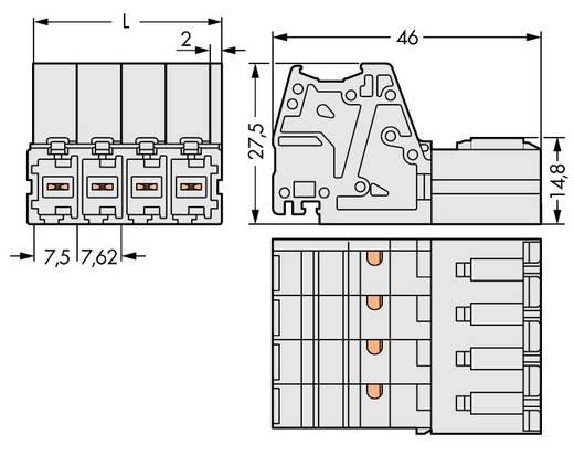 Buchsengehäuse-Kabel 831 Polzahl Gesamt 4 WAGO 831-3204 Rastermaß: 7.62 mm 24 St.