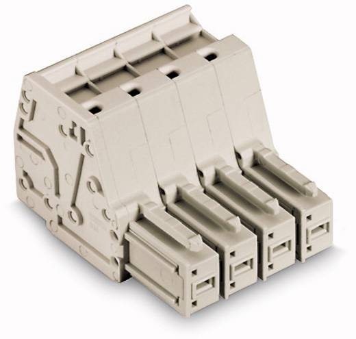 Buchsengehäuse-Kabel 831 Polzahl Gesamt 3 WAGO 831-3103/000-9037 Rastermaß: 7.62 mm 48 St.