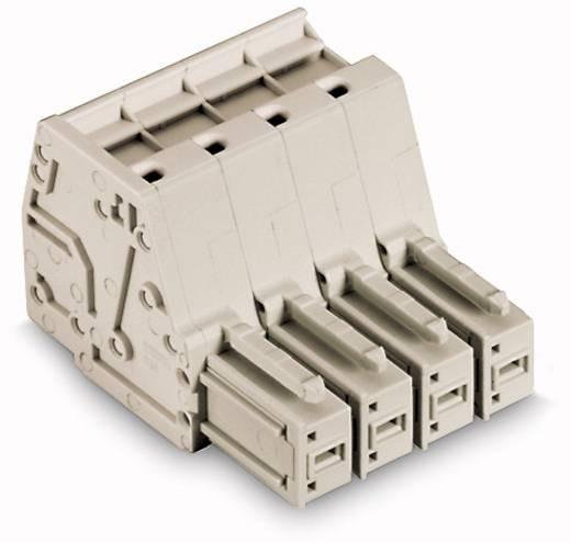 Buchsengehäuse-Kabel 831 Polzahl Gesamt 4 WAGO 831-3104 Rastermaß: 7.62 mm 24 St.