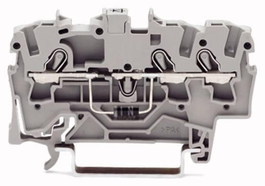 Diodenklemme 6.20 mm Zugfeder Belegung: L Grau WAGO 2004-1311/1000-400 50 St.