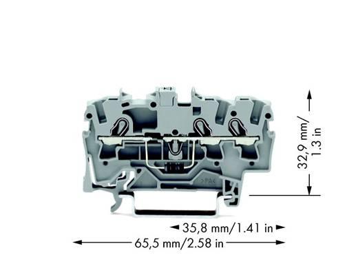Diodenklemme 6.20 mm Zugfeder Belegung: L Grau WAGO 2004-1311/1000-401 50 St.