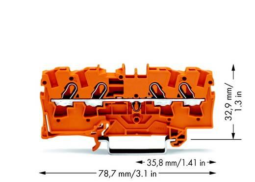 Durchgangsklemme 6.20 mm Zugfeder Orange WAGO 2004-1402 50 St.