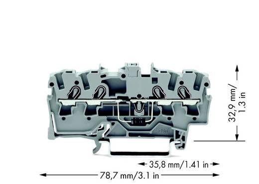 Diodenklemme 6.20 mm Zugfeder Belegung: L Grau WAGO 2004-1411/1000-401 50 St.