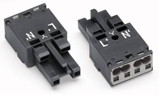 Netz-Steckverbinder Serie (Netzsteckverbinder) WINSTA MIDI Buchse, gerade Gesamtpolzahl: 2 25 A Dunkel-Grau WAGO 770-11