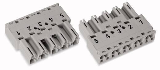 Netz-Steckverbinder Serie (Netzsteckverbinder) WINSTA MIDI Stecker, gerade Gesamtpolzahl: 5 25 A Grau WAGO 50 St.