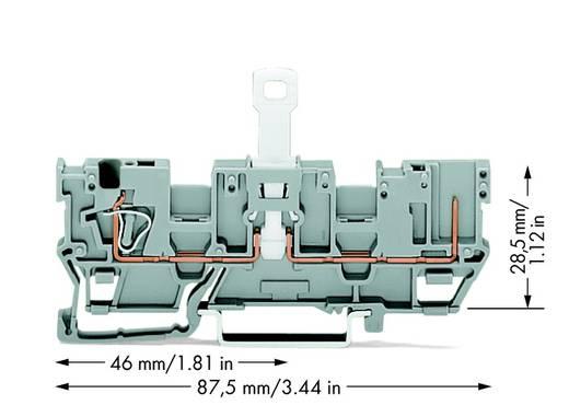 Basisklemme 5 mm Zugfeder Belegung: L Grau WAGO 769-212 50 St.