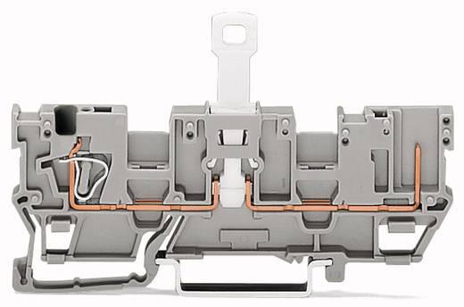 Basisklemme 5 mm Zugfeder Belegung: L Grau WAGO 769-213 50 St.