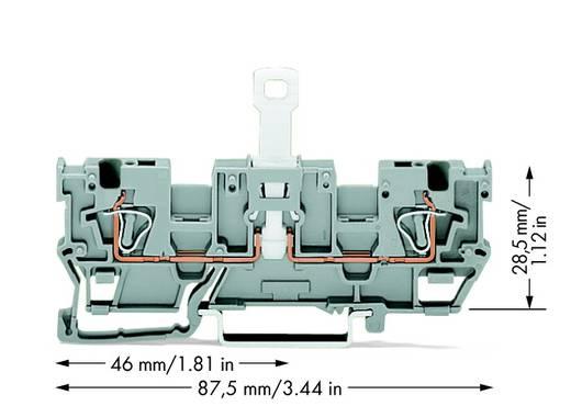 Trennklemme 5 mm Zugfeder Belegung: L Grau WAGO 769-242 50 St.