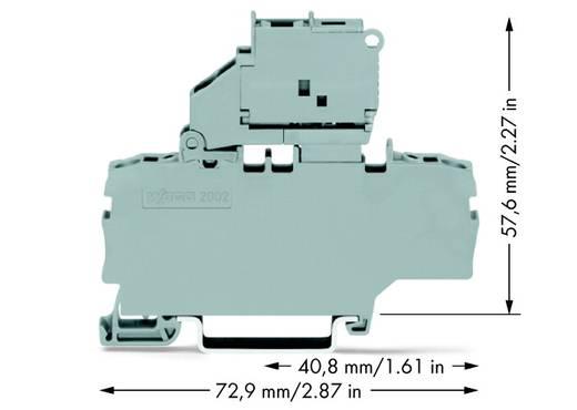 Sicherungsklemme 6.20 mm Zugfeder Grau WAGO 2002-1911 50 St.