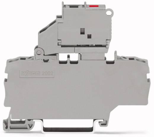 Sicherungsklemme 6.20 mm Zugfeder Grau WAGO 2002-1911/1000-541 50 St.