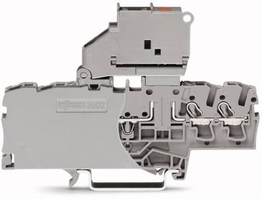 Sicherungsklemme 6.20 mm Zugfeder Belegung: L Grau WAGO 2002-1811/1000-541 50 St.