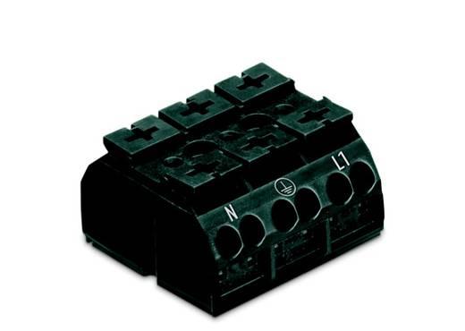 Geräteanschlussklemme Federklemme Schwarz WAGO 862-2533 250 St.