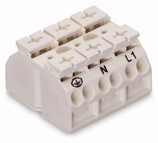 Geräteanschlussklemme Federklemme Weiß WAGO 862-1603/999-950 250 St.