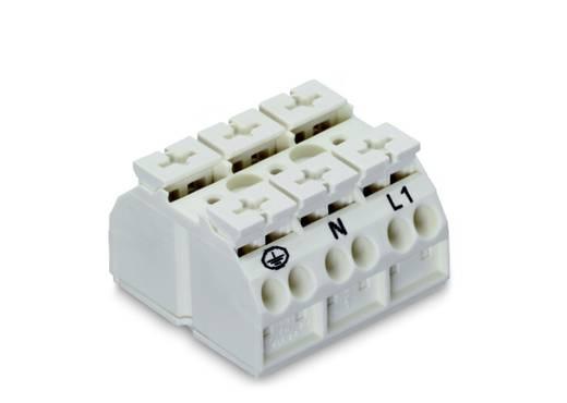 Geräteanschlussklemme Federklemme Weiß WAGO 862-1633/999-950 250 St.