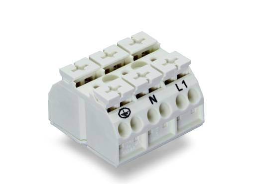 Geräteanschlussklemme Federklemme Weiß WAGO 862-9603 250 St.
