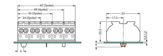 Geräteanschlussklemme Federklemme Schwarz WAGO 862-8594 200 St.