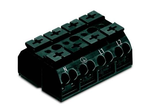 Geräteanschlussklemme Federklemme Schwarz WAGO 862-2534 200 St.