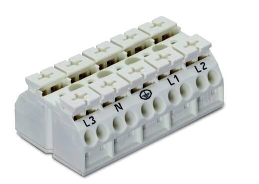 Geräteanschlussklemme Federklemme Weiß WAGO 862-2625 200 St.