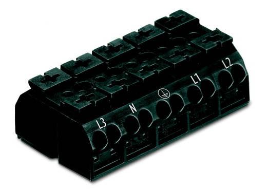 Geräteanschlussklemme Federklemme Schwarz WAGO 862-2525 200 St.