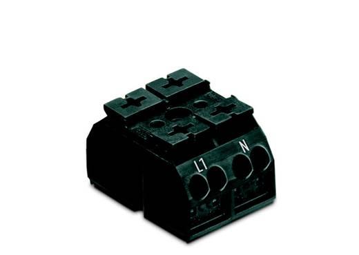 Geräteanschlussklemme Federklemme Schwarz WAGO 862-1552/999-950 500 St.