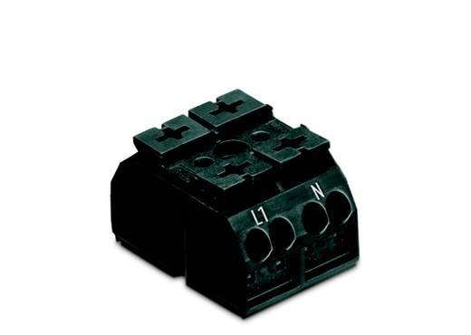 Geräteanschlussklemme Federklemme Schwarz WAGO 862-1562 500 St.