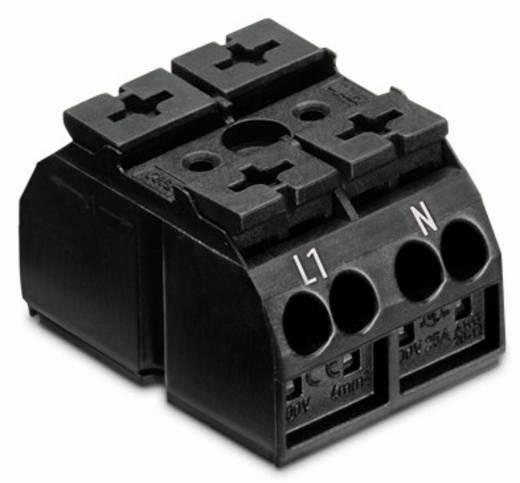 Geräteanschlussklemme Federklemme Schwarz WAGO 862-1562/999-950 500 St.