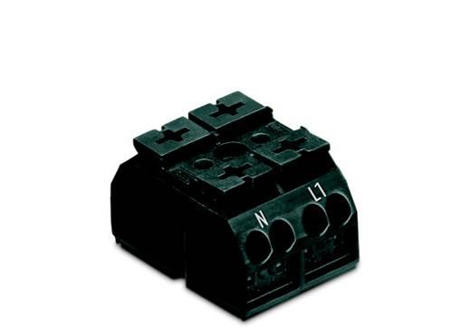 Geräteanschlussklemme Federklemme Schwarz WAGO 862-2562 500 St.
