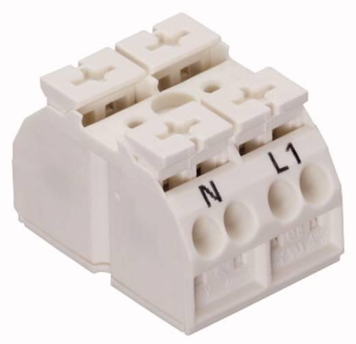 Geräteanschlussklemme Federklemme Weiß WAGO 862-2662 500 St.