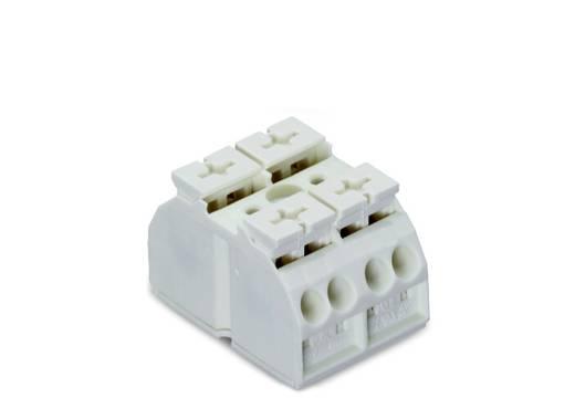 Geräteanschlussklemme Federklemme Weiß WAGO 862-662 500 St.