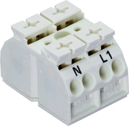 Geräteanschlussklemme Federklemme WAGO 862-2632 500 St.