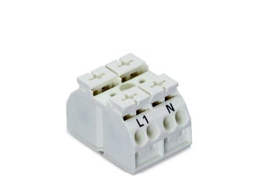 Geräteanschlussklemme Federklemme Weiß WAGO 862-1652 500 St.