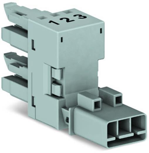 Netz-H-Verteiler Netz-Stecker - Netz-Buchse, Netz-Buchse Gesamtpolzahl: 3 Grau WAGO 50 St.