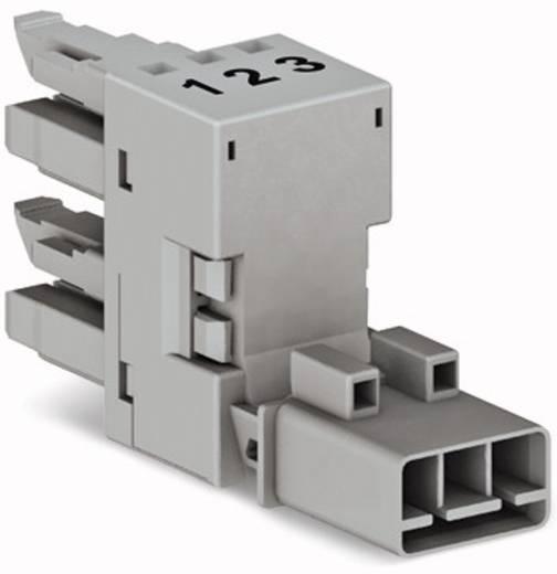 Netz-H-Verteiler Netz-Stecker - Netz-Buchse, Netz-Buchse Gesamtpolzahl: 3 Grau WAGO 890-1661 50 St.