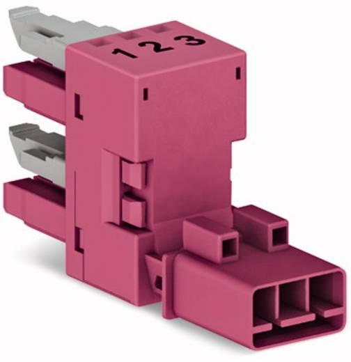 Netz-H-Verteiler Netz-Stecker - Netz-Buchse, Netz-Buchse Gesamtpolzahl: 3 Pink WAGO 50 St.