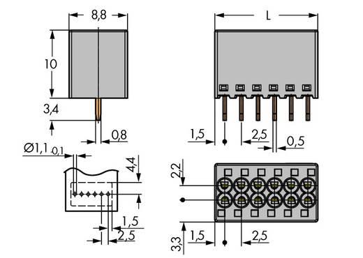 Federkraftklemmblock 1 mm² Polzahl 6 WAGO Grau 100 St.