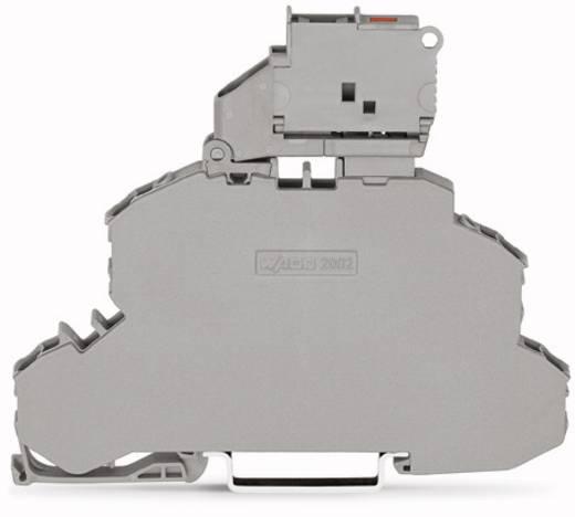 Doppelstock-Sicherungsklemme 6.20 mm Zugfeder Grau WAGO 2002-2611/1000-541 25 St.