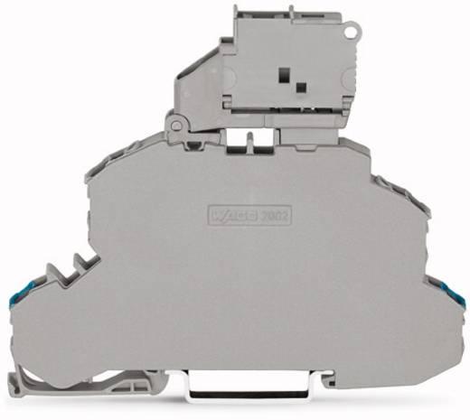 Doppelstock-Sicherungsklemme 6.20 mm Zugfeder Belegung: N, L Grau WAGO 2002-2612 25 St.