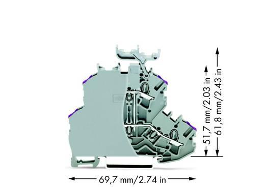 Doppelstock-Durchgangsklemme 4.20 mm Zugfeder Belegung: L Grau WAGO 2002-2238/099-000 50 St.