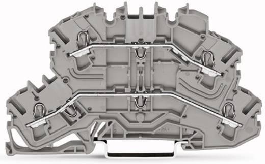 Doppelstock-Durchgangsklemme 5.20 mm Zugfeder Belegung: L, L Grau WAGO 2002-2601 50 St.