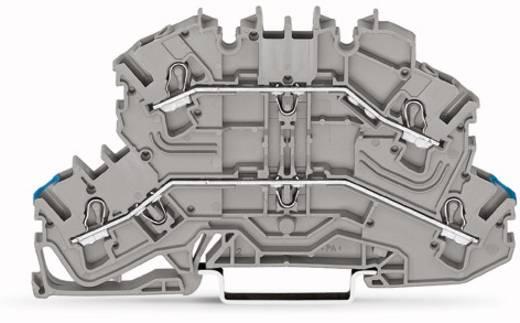 Doppelstock-Durchgangsklemme 5.20 mm Zugfeder Belegung: N, L Grau WAGO 2002-2602 50 St.