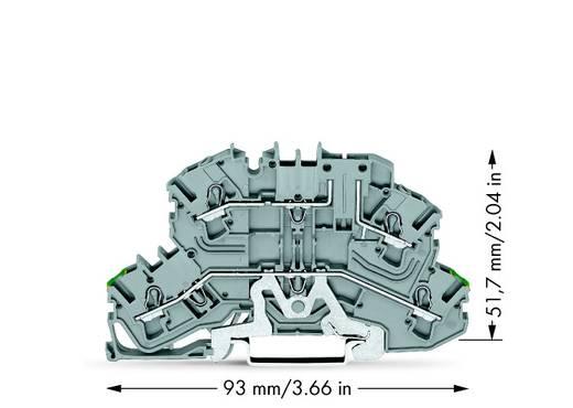 Doppelstock-Schutzleiterklemme 5.20 mm Zugfeder Belegung: PE, L Grau WAGO 2002-2667 25 St.