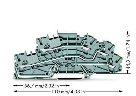 Installationsetagenklemme 5.20 mm Zugfeder Belegung: L, L, PE Grau WAGO 2003-6645 50 St.