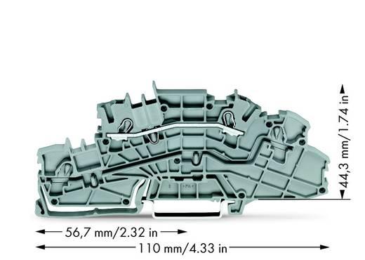 Installationsetagenklemme 5.20 mm Zugfeder Belegung: L Grau WAGO 2003-6650 50 St.