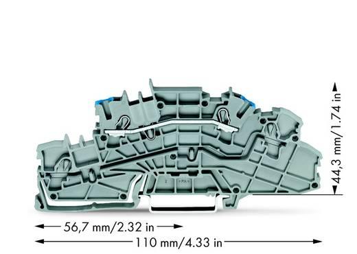 Installationsetagenklemme 5.20 mm Zugfeder Belegung: N Grau WAGO 2003-6651 50 St.