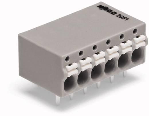 Federkraftklemmblock 1 mm² Polzahl 6 2081-1206 WAGO Grau 120 St.