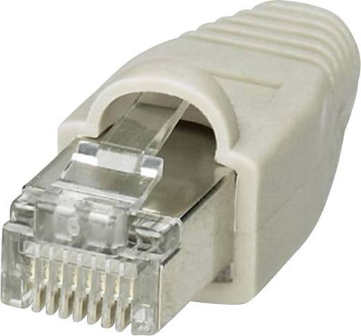 VS-08-NP-RJ45-GY - RJ45-Stecker VS-08-NP-RJ45-GY Phoenix Contact Inhalt: 1 St.