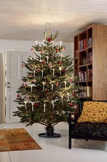 weihnachtsbaum beleuchtung innen 10 led warm wei konstsmide 1169 000 kaufen. Black Bedroom Furniture Sets. Home Design Ideas